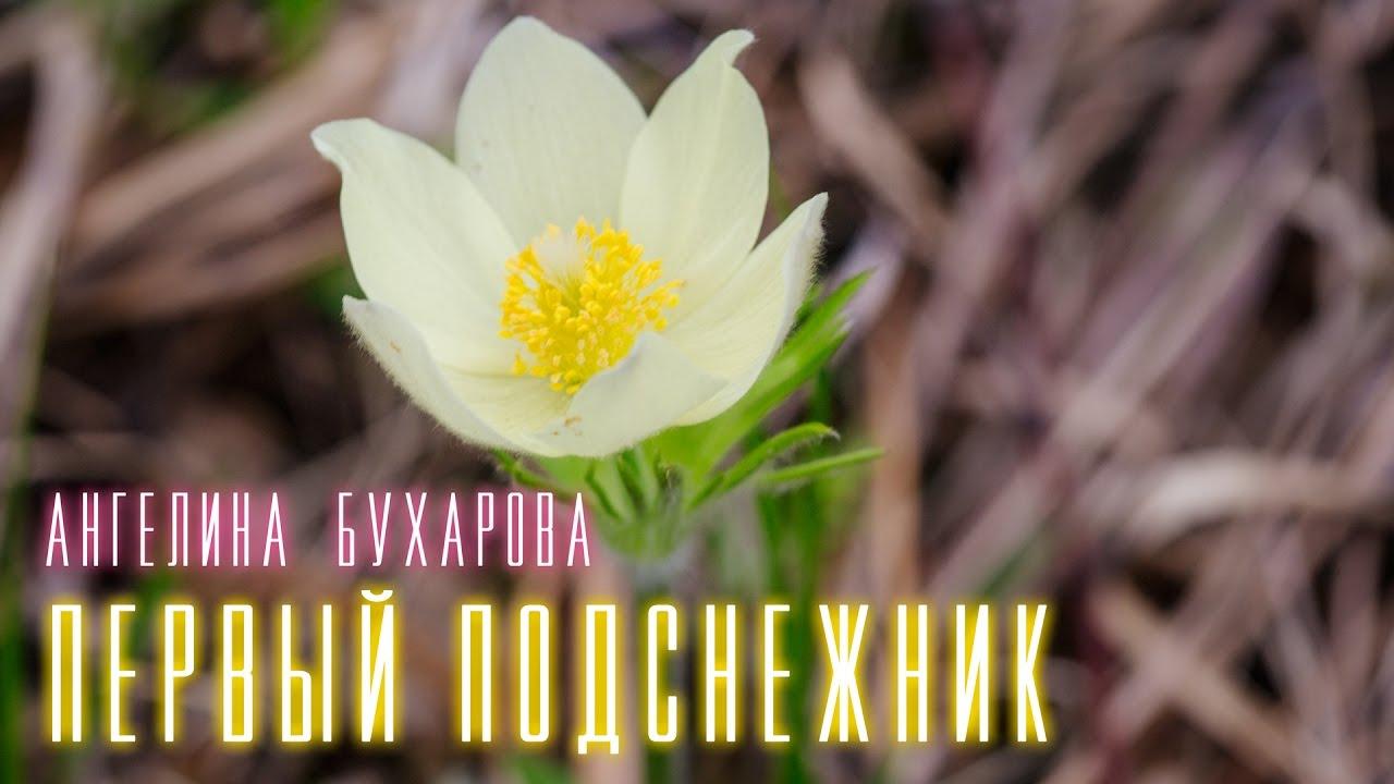 """А. Бухарова клип """"Первый подснежник"""""""